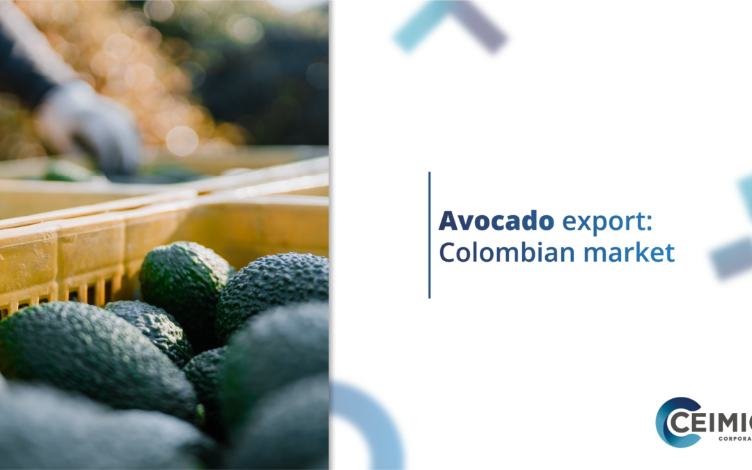 Avocado export: Colombian market